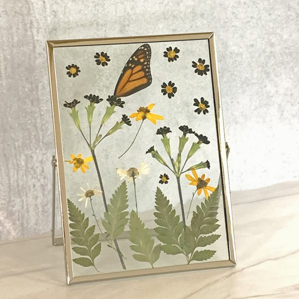 pressed-flower-picture-frame